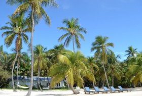 "Caribbean paradise: ""the Moorings""!"