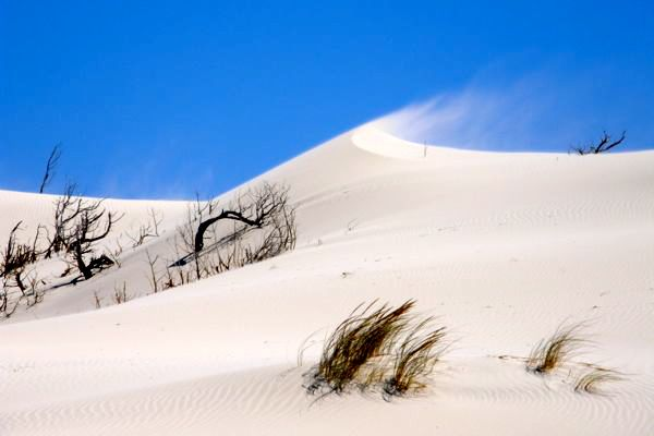 Dune di Is Arenas