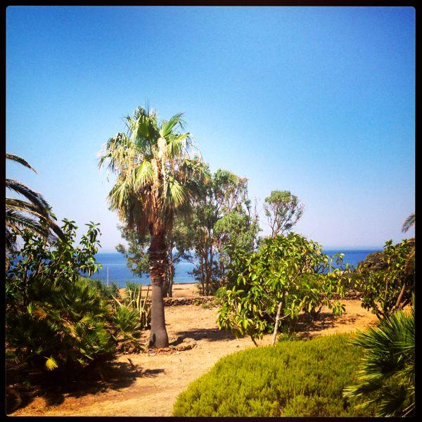 the villa's garden in pantelleria