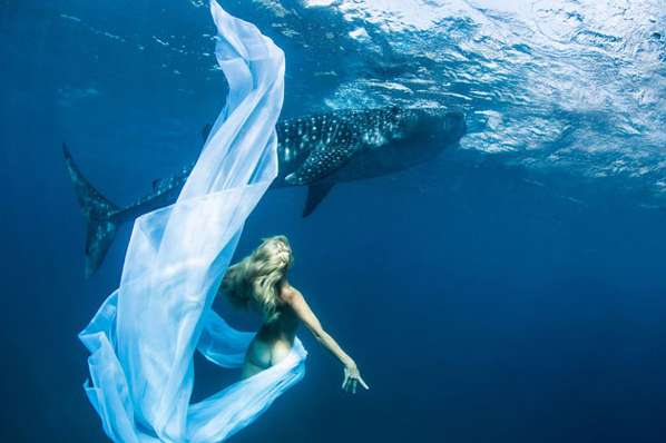 xwhale-shark-fashion-shoot.jpeg.pagespeed.ic.4Ef4A6TuQ0
