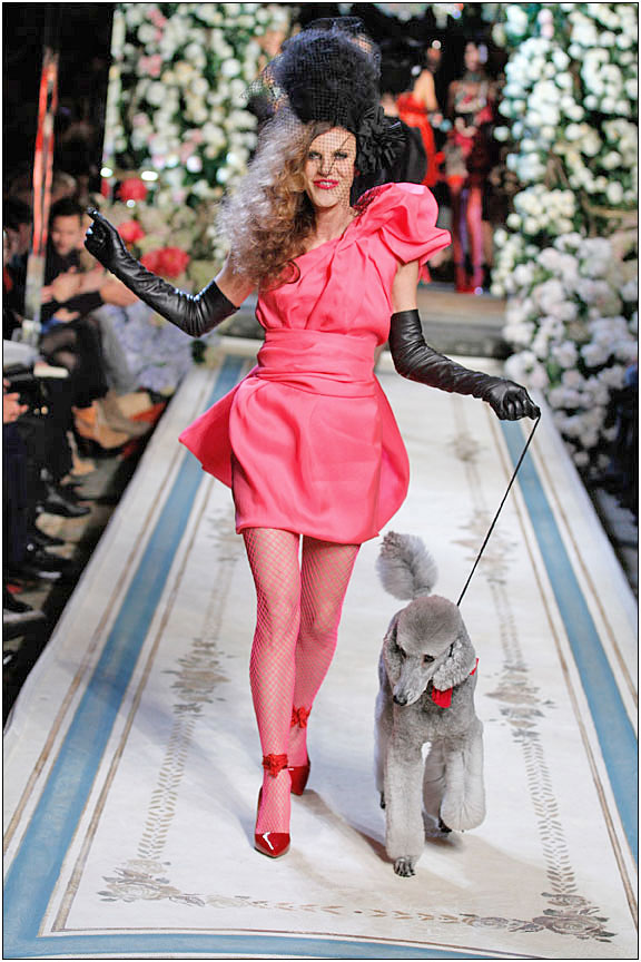 Anna-Dello-Russo-in-Pink-with-a-Grey-Poodle-on-the-Lanvin-H-M-Runway