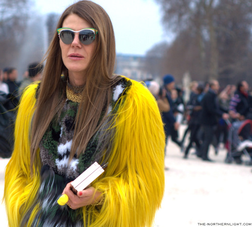 Northern-Light-PFW-Anna-Dello-Russo