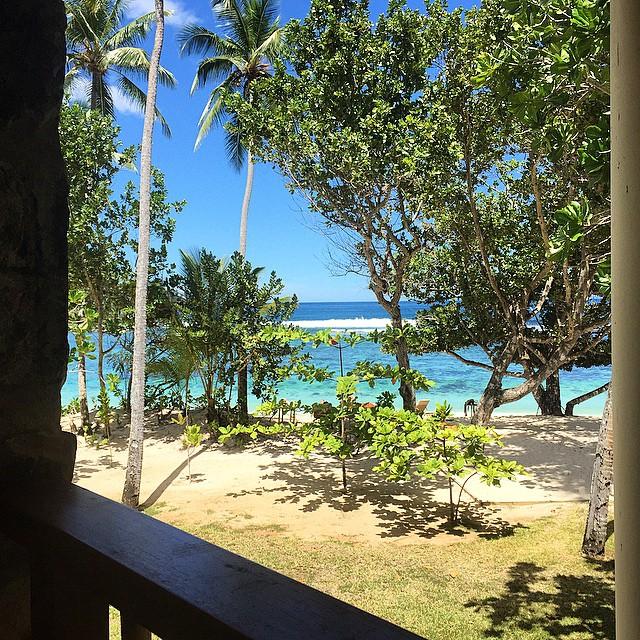 ❤️ #senzavista #Seychelles #tbm #nature #sea #beach #beautifulplace #indianocean #summer…