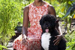First Lady Michelle Obama is seen with Bo, the Obama family dog, in the White House Kitchen Garden, Sept. 14, 2011. (Official White House Photo by Lawrence Jackson)This official White House photograph is being made available only for publication by news organizations and/or for personal use printing by the subject(s) of the photograph. The photograph may not be manipulated in any way and may not be used in commercial or political materials, advertisements, emails, products, promotions that in any way suggests approval or endorsement of the President, the First Family, or the White House.
